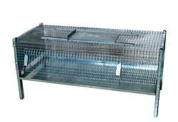Cage of fattening for quails /5037