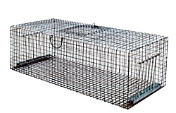 Cage with multiple sockets for pigeons and starlings /5005